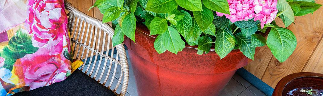 XL pots Outdoor