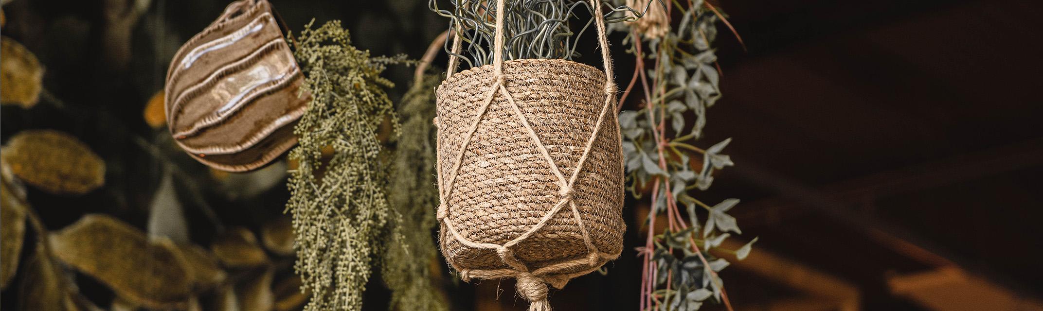 Plant hangers Spring/Summer