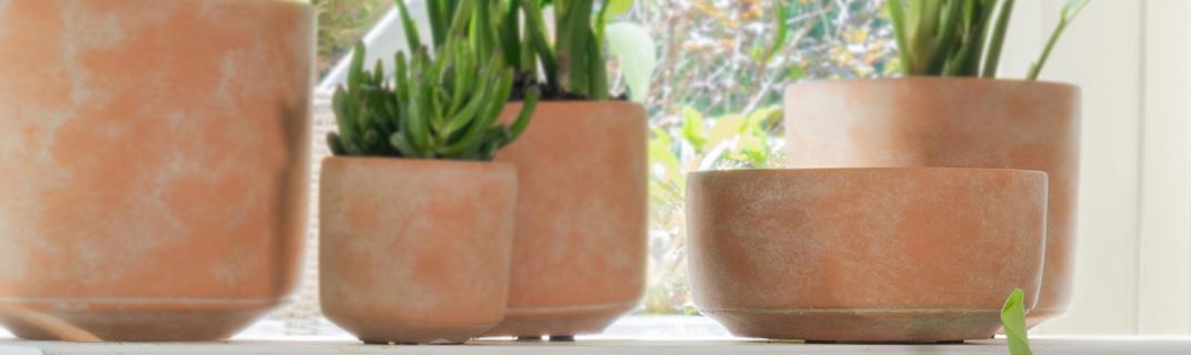 Schalen 15-16 cm